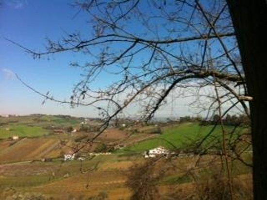 Alloggio al San Girolamo: panorama dal giardino dell'alloggio