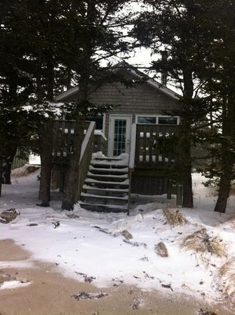 Oceanstone Resort: Grey Owl - Feb 2013