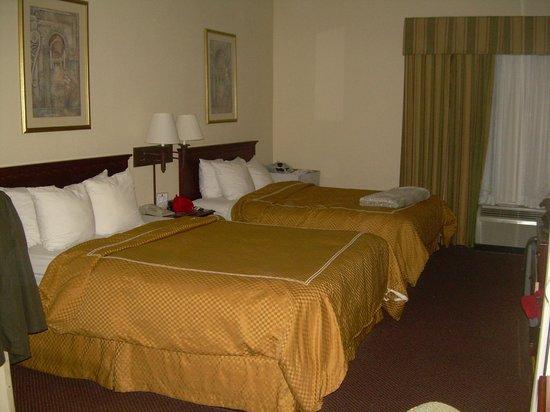 Comfort Suites Newark: Camas cómodas.