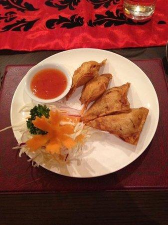 Thai Rose & Bay Steakhouse : won tons starter