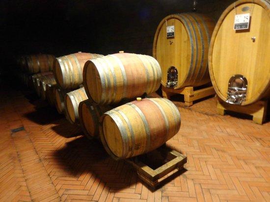Tuscan Wine Tours by Grape Tours: Chianti aging