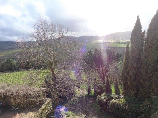 Tuscan Wine Tours by Grape Tours: Views