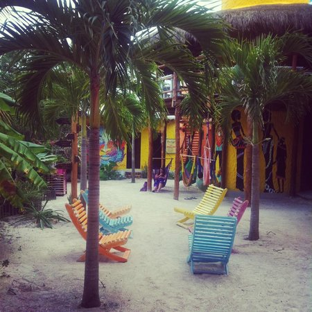 ‪‪Tribu Hostel‬: Hammock area‬