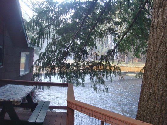Metolious River Lodges : Dragonfly Cabin