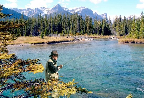 Banff fishing unlimited banff national park all you for Fishing in banff