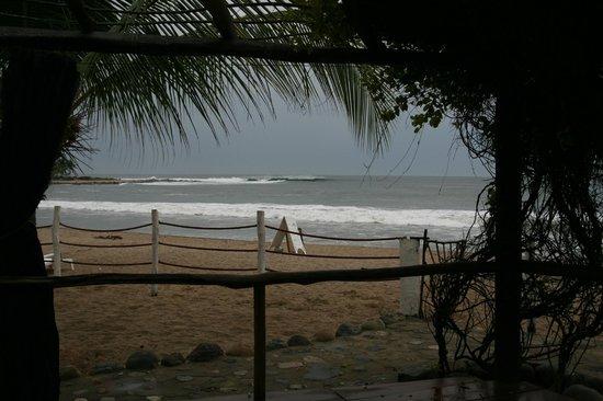 Hacienda Eden: view from the yoga platform