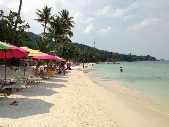 Longbay Resort: La plage
