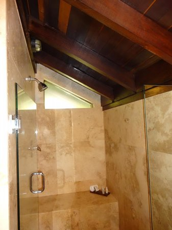 Renaissance St. Croix Carambola Beach Resort & Spa: Spacious bathroom