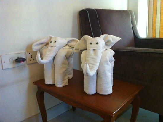 The Meadows: Adorable towel sculptures