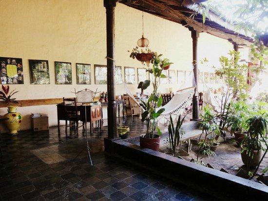 Via Via: Typical Courtyard style restaurant