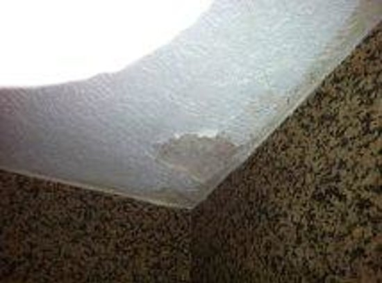 Days Inn Fort Lauderdale Airport Cruise Port: large paint flaking on ceiling in tub area