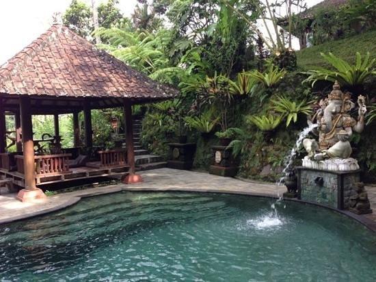 Villa Sarna Ubud: Hotel pool
