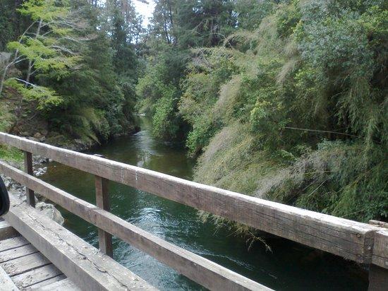 Peumayen Lodge & Termas: Camino a Peumayen