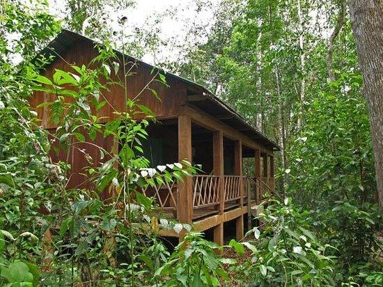 Campamento Rio Lacanja