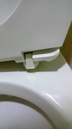 Sleep Inn Garner : Clean the pee and fix the seat... I had to do it for you....