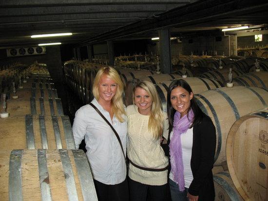 NZWINEPRO - Auckland Wine Tours