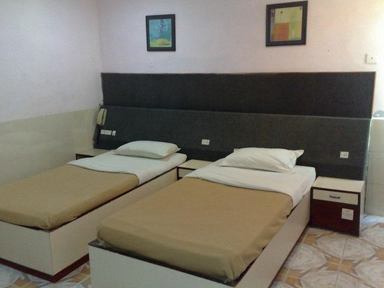Hotel Ankur: Double bed AC room