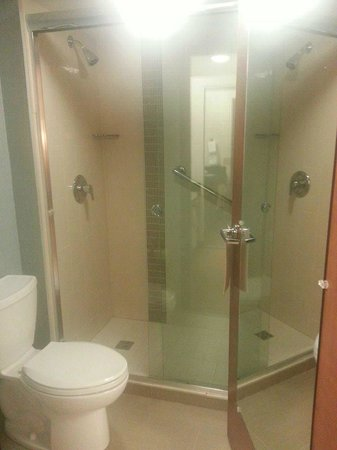 Hyatt Place Charlotte Airport/Tyvola Road: Bathroom in suite