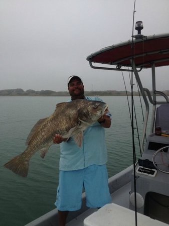 Steven's Guide Service Day Tours : 3/23/13 56# Black Drum