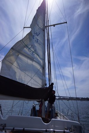 Sail Away San Diego - Day Tours