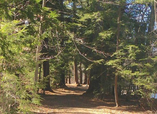 Exeter, New Hampshire: Phillips Exeter Trail