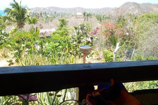 Villa Escondida: El Jardin