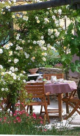 La Capucine : Petit déjeuner au milieu des fleurs