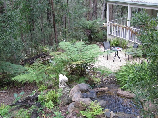 Myers Creek Cascades: Treetops Cottage - Absolute seclusion in your own private Hideaway!