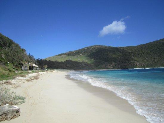 Ned's Beach Lord Howe Island