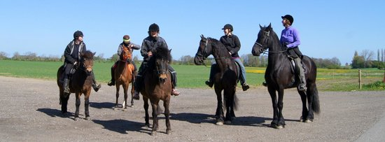 Hejrede Friluftsgaard: Ridetur med Riderute Lolland-Falster