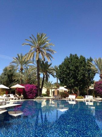 Club Med Marrakech le Riad: Palmiers et bougainvillée