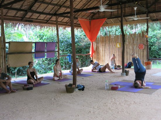 Grounded Koh Tao's Wellbeing Centre: yoga sala