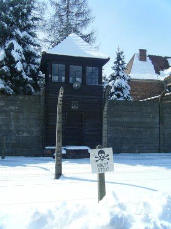 Ostoya Palace Hotel : Aushwitz