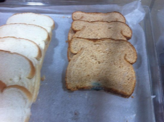 Country Inn & Suites by Radisson, Nashville Airport East, TN : Moldy bread for breakfast anyone???