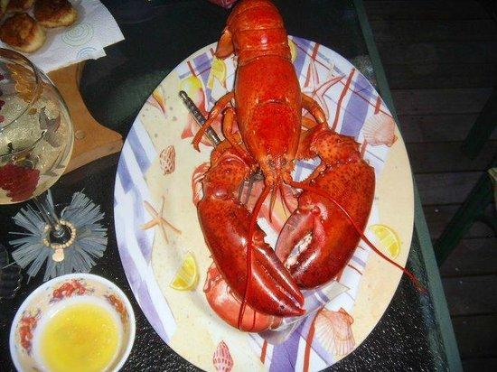 Kathleen's Kottage on Martha's Vineyard: Lobsters