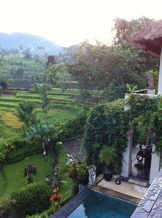 Surya Shanti Villa: morning