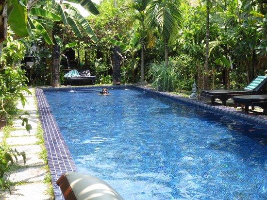 เพทิท วิลล่า บูทิค & สปา: Pool area