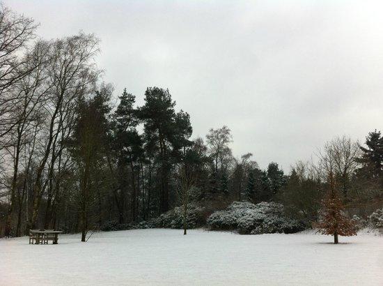 Droste's herberg : Back scene