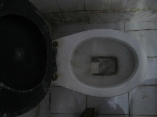 Shanti Lodge: beautiful toilet