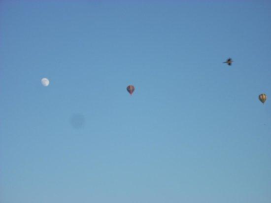 La Tourangelle: Une envolée de montgolfière de notre jardin