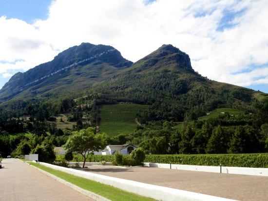 Zorgvliet Country Lodge: view