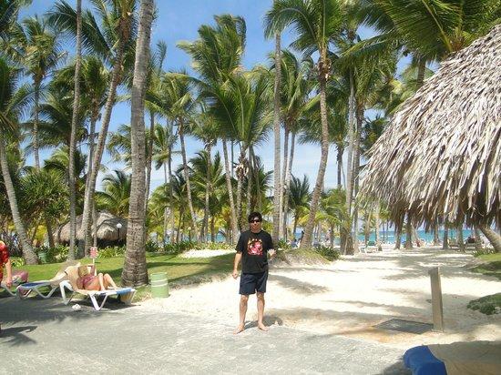 ClubHotel Riu Bambu: Vista desde la piscina hacia la playa.