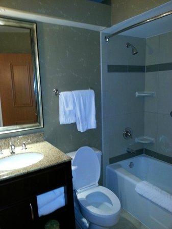 Hilton Chicago/Oak Lawn : Bathroom
