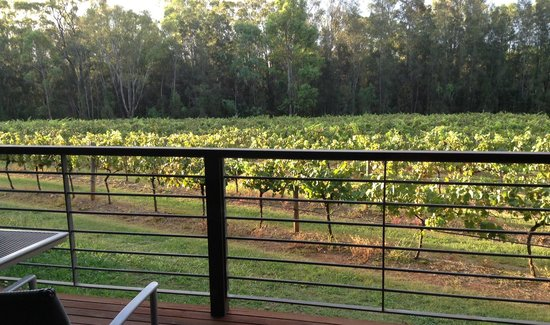 Hermitage Lodge : The view from our decking