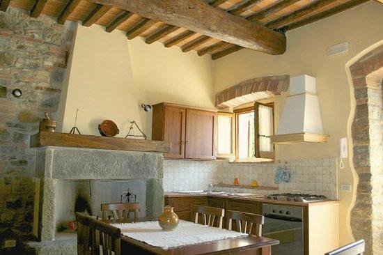 Cucina/soggiorno con splendido camino finemente arredata in stile ...