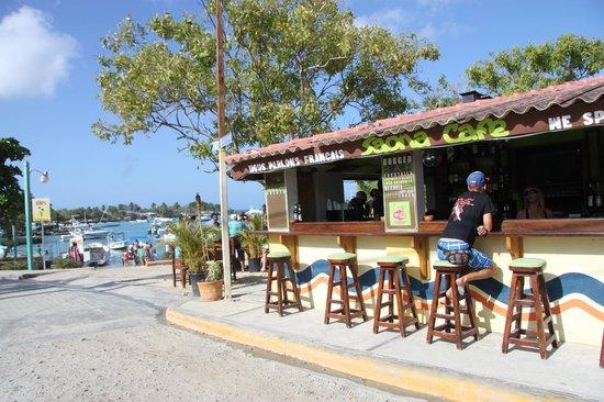 Saona Cafe: la vue sur la marina