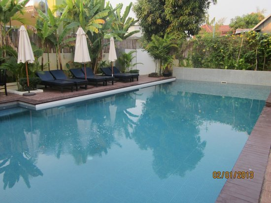 The Kool Hotel: pool