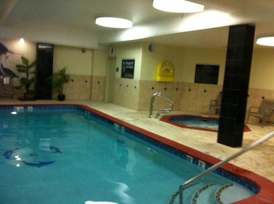 Hampton Inn & Suites Denver-Speer Boulevard : Pool/Hot Tub