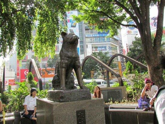 Hachiko: Ponto de Encontro