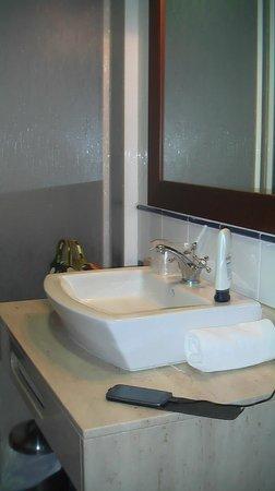 Hostal del Senglar : lavabo
